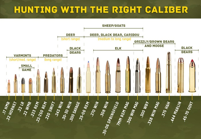 Rifle selection what calibre is the best belmont ammunition