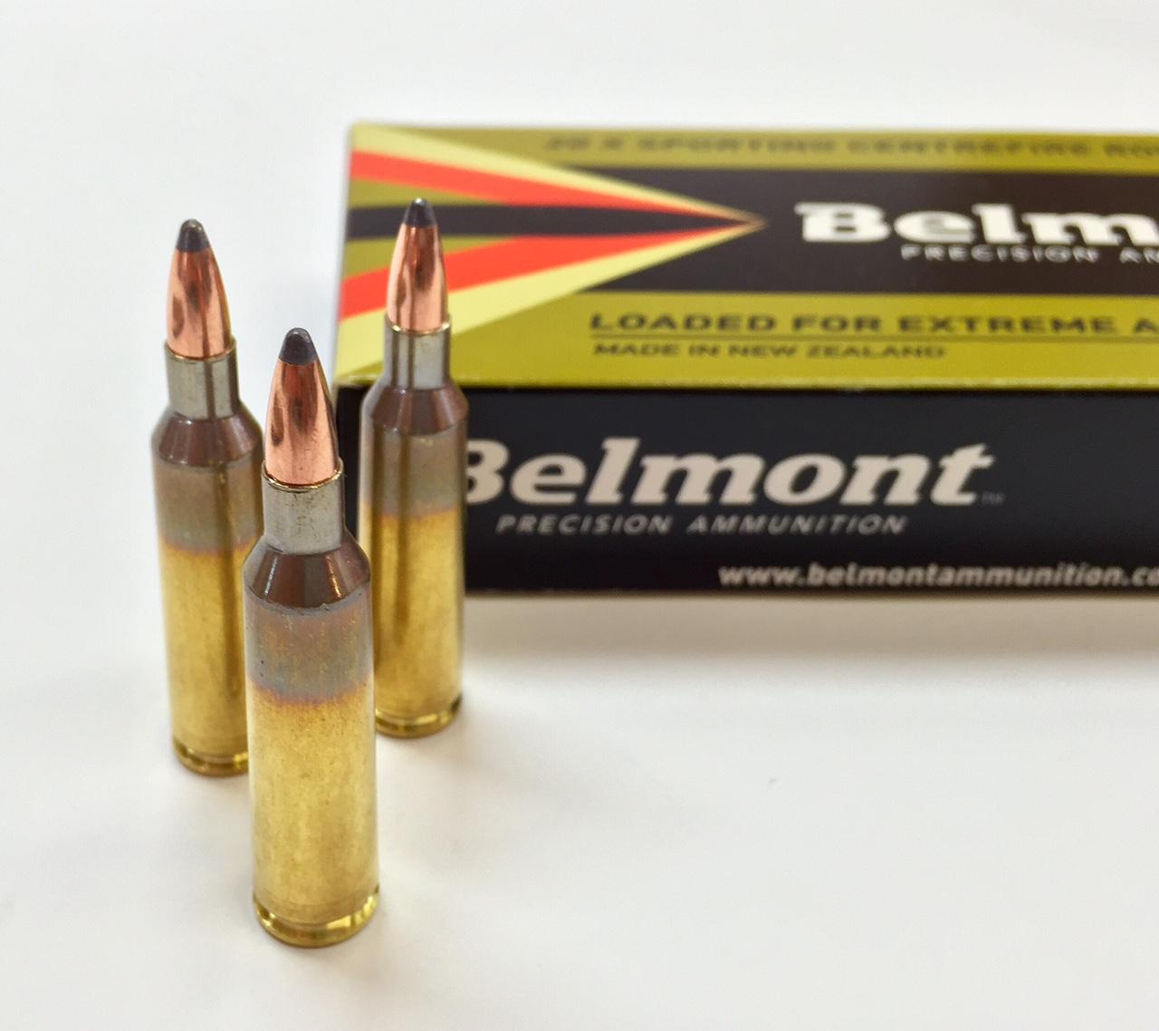 22-250 60gr SP (Nosler Partition Projectile) - 20 rounds