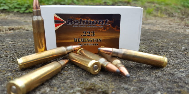 .223 Rem 55Gr Soft Point - (Hornady Projectile) - 50 ...